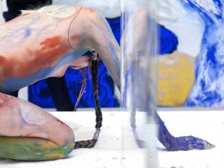 Belvedere Museum, Donna Huanca EPITHELIAL ECHO, Art On Screen - NEWS - [AOS] Magazine
